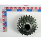 PIGNON ETAGE 12-14-16-20-22-24 Dts (Bloc roue combine MS) + VIS